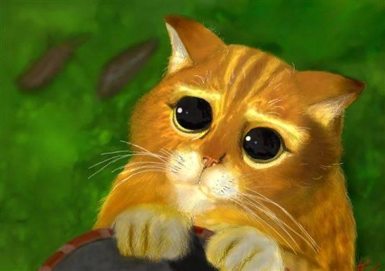 вам котята из шрека фото с глазами картинки делом зрителям решили